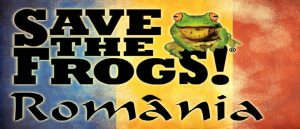 salvati broscutele broastele romania ziua internationala a broastelor pericole amfibieni cale de disparitie specii extincte importanta broastelor mediu si om save the frogs, ceicunoi.wordpress.com 7