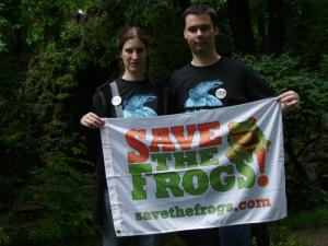 salvati broscutele broastele romania ziua internationala a broastelor pericole amfibieni cale de disparitie specii extincte importanta broastelor mediu si om save the frogs, ceicunoi.wordpress.com 8