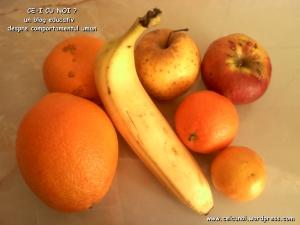 ce sa nu mananci de craciun carne mezeluri dulciuri comert industriale chimicale e uri substante toxice aspartam otrava nocive sanatatii, miere naturala, fructe legume ceicunoi.wordpress.com 8