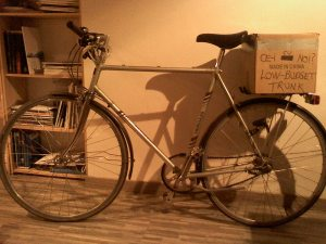 cutie portbagaj bicicleta low budget trunk ce-i cu noi ceicunoi.wordpreass.com un blog educativ despre comportamentul uman, cu bicicleta in trafic iarna, echipament ciclism 3