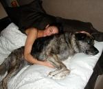 cum sa faci sex cu un caine ghid complet ca sa va simtiti bine amandoi sfaturi relatii sexuale cu animale fata baiat barbat femeie, ceicunoi.wordpress.com, foto puremothers