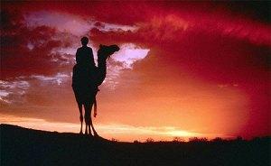 povestea pilda celor 17 camile cea de-a 18-a camila in desert beduini, tehnici seminar nlp practioner cursuri curs programare neuro lingvistica