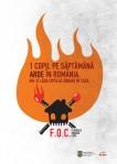 campanie prevenire foc flacarile omoara copii sfaturi despre incendiu un copil pe saptamana arde in romania informatii preventie arderea casei incendiu minori casa soba butelie 2