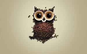 simboluri masonice semne masonerie francmasoni, reclama boabe cafea in forma de bufnita masonica
