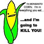 compania americana monsanto organisme modificate genetic preia controlul asupra lantului alimentar hrana mondiala mancare sanatoasa pesticide erbicide resursa hrana cine conduce lumea lobby 13