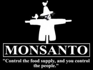 compania americana monsanto organisme modificate genetic preia controlul asupra lantului alimentar hrana mondiala mancare sanatoasa pesticide erbicide resursa hrana cine conduce lumea lobby 9