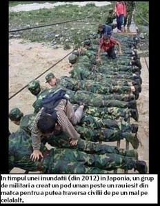 armata e de partea poporului politie jandarmeria ajuta populatia la inundatii si cand are probleme, militarii ar trebui sa sustina protestele de strada ale oamenilor impotriva statului corupt si sistemului mafiot
