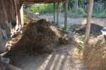 Eveniment GRATUIT Permacultura 11 , 12 mai 2013, Strambeni, Arges. Excursie la tara, claca traditionala, agricultura eco, plantari rasaduri legume fructe pomi, cazare cort compost gradina