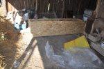 Eveniment GRATUIT Permacultura 11 12 mai 2013, Strambeni, Arges Excursie la tara, claca traditionala, agricultura eco, plantari rasaduri legume fructe pomi, cazare cort lucrari agricole bio