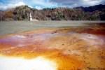 Galerie foto poze poluare dezastru ecologic iaz decantare Valea Sesii Sesei exploatare miniera cianuri substante toxice chimice sat distrus de proiectul minier rmgc compania Rosia Montana ecologie 1