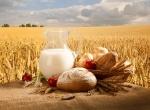 Graul si cerelalele - alimentatie sanatoasa sau otrava si o sursa de boli pentru organismul uman. Hrana mancare traditionala - sanatatea omului, cereale integrale, paine neagra, faina alba nociva, rele