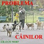Blogul Ce-i cu noi a lansat un nou site legat de Problema cainilor maidanezi fara stapan din Sectorul 6 Bucuresti si propune o Solutie inteligenta de rezolvare eliminare a cainilor liberi strazi