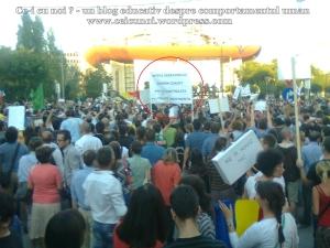 16  poze imagini video protest de strada miting proiect cianuri salvati rosia montana 1 09 septembrie 2013 bucuresti universitate impotriva gazelor de sist lege guvernul ponta rmgc