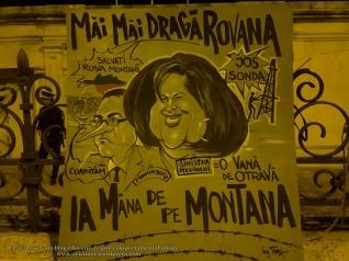 39 pancarta rovana plumb ministru mediului Romania poze imagini foto protest miting manifestatie 5 septembrie 2013 proiect rosia montana bucuresti palatul parlament casa poporului