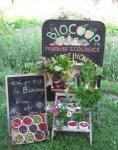 site magazin desfacere Sibiu cooperativa biocoop produse bio eco traditionale taranesti sanatoase fara organisme modificate genetic fara chimicale pesticide naturale agricultura legume lactate gemuri sirop