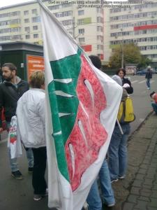 6 galerie poze imagini foto mars protest miting rosia montana bucuresti 13 octombrie 10 2013 manifestatie anti contra impotriva proiectului minier cu cianuri RMGC pancarte