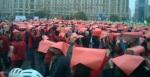 74 galerie poze imagini foto mars protest miting rosia montana bucuresti 13 octombrie 10 2013 manifestatie anti contra impotriva proiectului minier cu cianuri RMGC pancarte