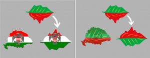 frunza logo campania uniti salvam rosia montana munti lac cianuri steagul ungariei rosu alb verde forma ungaria mare destramarea romaniei impotriva proiectului cu cianuri din muntii apuseni