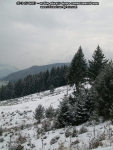 poze imagini foto peisaj iarna bicaz judet neamt moldova romania europa zapada baraj lac izvorul muntelui apa case pe dealuri brazi padure munte  5