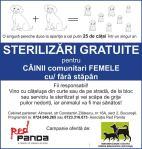 sterilizari gratuite caini cu sau fara stapan maidanezi comunitari bucuresti lista cabinete almavet importanta castrare femele scaderea numarului cainilor  abandonati inmultirea animalelor pe strada