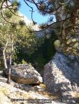 22 poze imagini foto stanca munte rau arie protejata arii naturale rezervatia naturala cheile sugaului munticel bicaz chei judet neamt excursie munte in natura peisaje romania padure toamna iarna