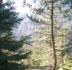 23 poze imagini foto stanca munte rau arie protejata arii naturale rezervatia naturala cheile sugaului munticel bicaz chei judet neamt excursie munte in natura peisaje romania padure toamna iarna