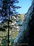 28 poze imagini foto stanca munte rau arie protejata arii naturale rezervatia naturala cheile sugaului munticel bicaz chei judet neamt excursie munte in natura peisaje romania padure toamna iarna