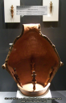 36 poze imagini foto muzeul istorie arheologie arta cultura civilizatia cucuteni piatra neamt istoria milenara a romaniei artefacte vase ceramice figurine obiecte ceramica de cucuteni arta eneolitica