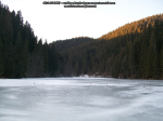 42 poze foto imagini lacu rosu bicaz chei inghetat iarna ianuarie 2014 oameni care merg pe apa lacului lac gheata cu patine de gheata pe lac inghetat natural strat gheata zapada munte judetul neamt