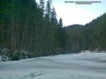 46 poze foto imagini lacu rosu bicaz chei inghetat iarna ianuarie 2014 oameni care merg pe apa lacului lac gheata cu patine de gheata pe lac inghetat natural strat gheata zapada munte judetul neamt