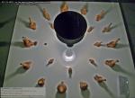 54 poze imagini foto muzeul istorie arheologie arta cultura civilizatia pre cucuteni piatra neamt soborul zeitelor colectie figurine artefacte vechi vase ceramice obiecte antice moldova Romania