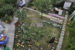 Parteneriatele ASAT Romania Asociatia pentru Sustinerea Agriculturii Taranesti hrana sanatoasa mici producatori romani legume direct la consumatori locali. Sustineti taranii si micii fermieri bio Boicotati supermarket urile 31