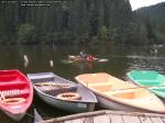 poze imagini foto lacul lacu rosu vara august 2013 oameni cu barca pe lac barci cu vasle tulpini scufundate copaci in apa padure turism judetul neamt cheile bicazului bicaz 4