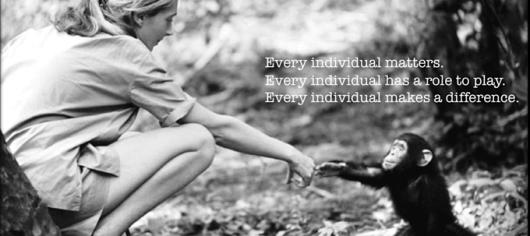 National geographic's 125 Years Anniversary by interviu Jane Goodall despre masuri pentru conservarea mediului si bunastarea omenirii in armonie cu natura si viata salbatica vegetarianism saracie guverne corporatii 2