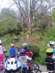 Scoala de bicicleta MTB - cursuri gratuite pentru copii biciclisti incepatori offroad by ciclist profesionist Ulisse Gheduzzi parcul carol Bucuresti martie aprilie 2014 plimbari bicicleta 27