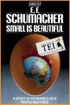 05 E.F. Schumacher – Mic inseamna frumos. Economie cu chip uman - carti din tei traduceri ecologice independente societate globalizare viata la tara permacultura producerea hranei lucru in gradina