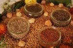 seminte taranesti program multiplicare soiuri traditionale romanesti asociatia ecoruralis cluj