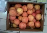 Grapefruit de aruncat - încă bune