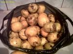 mandarine banane portocale fructe piata agroalimentara Mandarine la 62 de bani kilogramul (0,625 lei) în Bucuresti. Ce poti găsi dacă mergi mai des la piață 4