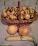 mandarine banane portocale fructe piata agroalimentara Mandarine la 62 de bani kilogramul (0,625 lei) în Bucuresti. Ce poti găsi dacă mergi mai des la piață 5