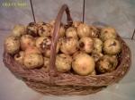 mandarine banane portocale fructe piata agroalimentara Mandarine la 62 de bani kilogramul (0,625 lei) în Bucuresti. Ce poti găsi dacă mergi mai des la piață 6