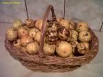 mandarine banane portocale fructe piata agroalimentara Mandarine la 62 de bani kilogramul (0,625 lei) în Bucuresti. Ce poti găsi dacă mergi mai des la piață 7