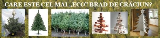 care este cel mai eco ecologic brad de craciun protectia mediului natural plastic poluare oxigen co2 pepiniera brazi vii radacina craciun decembrie 2014