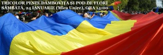pod steag tricolor peste raul dambovita bucuresti mica unire 24 ianuarie 1859 2015 flori aruncate in apa unirea molodova basarabia cu romania