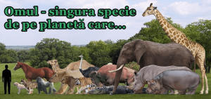 comparatie om animale omul specia umana singura specie de pe planeta din lume care alimentatie sanatoasa hrana viata naturala