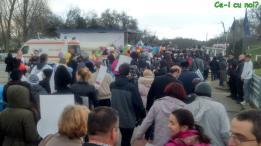 marsul pentru viata 2016 bucuresti poze parc tineretului