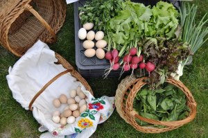 hrana-sanatoasa-de-la-tarani-fructe-legume