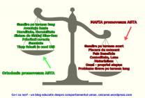 balanta-false-beneficii-alegeri-decizii-morale-normalitate-mafie-ortodoxie-bine-rau-ceicunoi