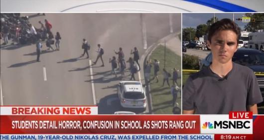 atac-terorist-premeditat-atac-armat-liceu-florida-steag-fals-14-februarie-2018-minciuni-mafia-internationala-david-hogg