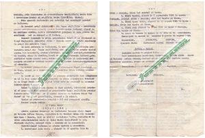 acte-adoptie-copii-iohannis-justitiarul-2-ok